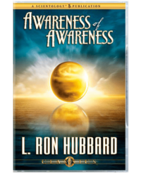 Awareness of Awareness